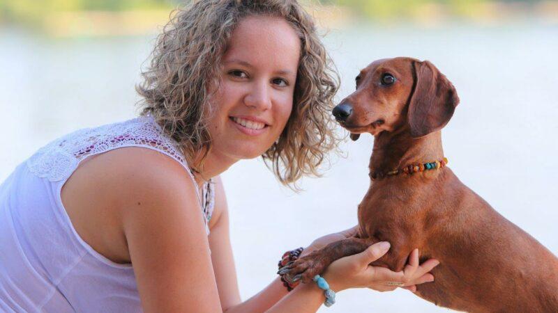 Hundeschule Gordon - Der zufriedene Hund: Aktueller Trainingsplan
