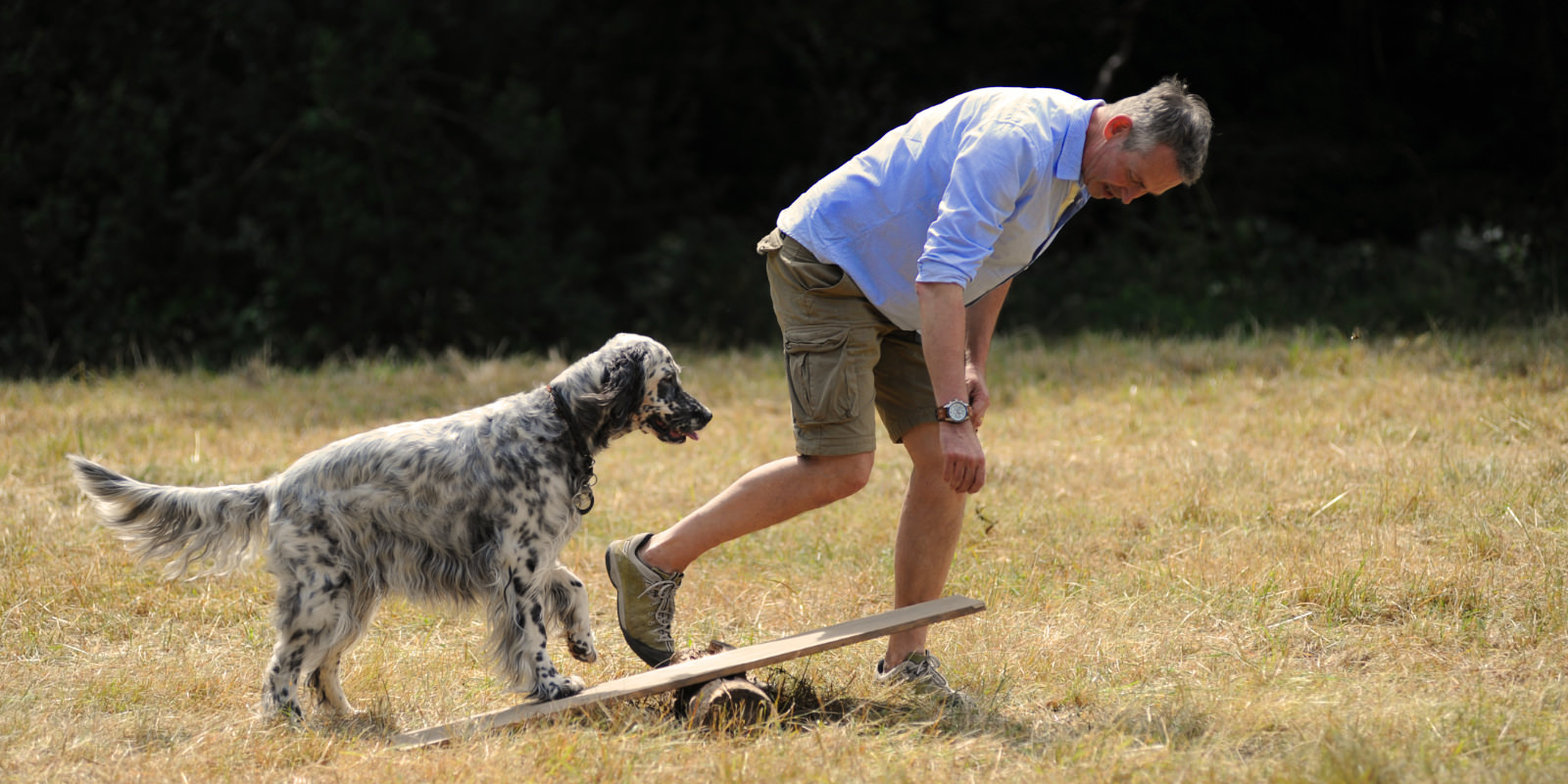 Herzlich Willkommen bei Gordon – Der zufriedene Hund